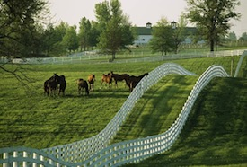 kentucky horse property with farmland