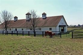 equine properties for sale in kentucky